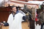 No faltó la cetrería en el mercado medieval celebrado el pasado fin de semana / Foto: P. Sánchez