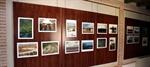 Exposición fotográfica sobre los humedales en Villarrubia de los Ojos (Ciudad Real).